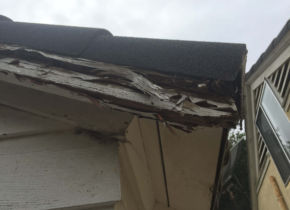 Dry Rot Damage on Fascia